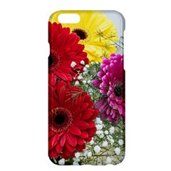 Flowers Gerbera Floral Spring Apple Iphone 6 Plus/6s Plus Hardshell Case by Nexatart