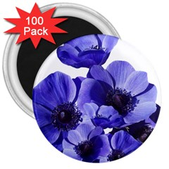 Poppy Blossom Bloom Summer 3  Magnets (100 Pack) by Nexatart