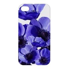 Poppy Blossom Bloom Summer Apple Iphone 4/4s Hardshell Case by Nexatart