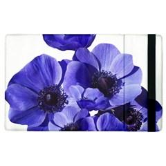 Poppy Blossom Bloom Summer Apple Ipad 2 Flip Case by Nexatart