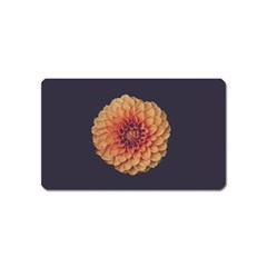 Art Beautiful Bloom Blossom Bright Magnet (name Card) by Nexatart