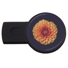 Art Beautiful Bloom Blossom Bright Usb Flash Drive Round (2 Gb)