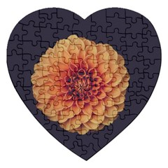 Art Beautiful Bloom Blossom Bright Jigsaw Puzzle (heart) by Nexatart