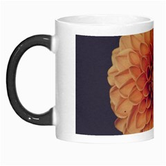 Art Beautiful Bloom Blossom Bright Morph Mugs by Nexatart