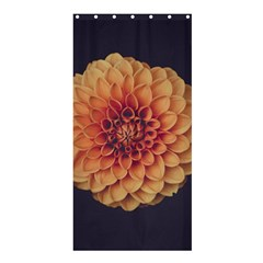 Art Beautiful Bloom Blossom Bright Shower Curtain 36  X 72  (stall)  by Nexatart