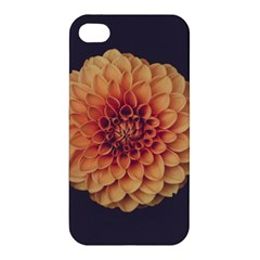 Art Beautiful Bloom Blossom Bright Apple Iphone 4/4s Hardshell Case