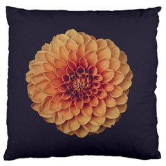 Art Beautiful Bloom Blossom Bright Large Cushion Case (one Side) by Nexatart