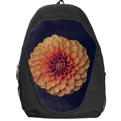 Art Beautiful Bloom Blossom Bright Backpack Bag by Nexatart
