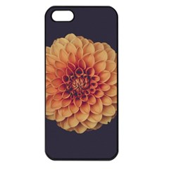 Art Beautiful Bloom Blossom Bright Apple Iphone 5 Seamless Case (black)