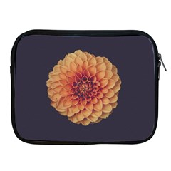 Art Beautiful Bloom Blossom Bright Apple Ipad 2/3/4 Zipper Cases by Nexatart