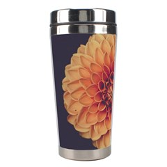 Art Beautiful Bloom Blossom Bright Stainless Steel Travel Tumblers by Nexatart
