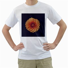 Art Beautiful Bloom Blossom Bright Men s T Shirt (white)
