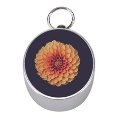 Art Beautiful Bloom Blossom Bright Mini Silver Compasses by Nexatart
