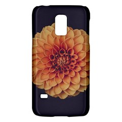 Art Beautiful Bloom Blossom Bright Galaxy S5 Mini by Nexatart