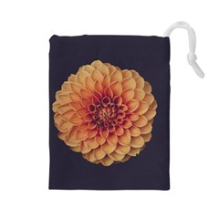 Art Beautiful Bloom Blossom Bright Drawstring Pouches (large)