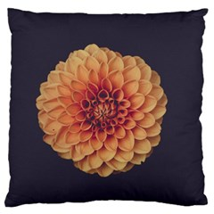 Art Beautiful Bloom Blossom Bright Large Flano Cushion Case (two Sides)