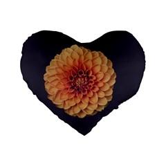 Art Beautiful Bloom Blossom Bright Standard 16  Premium Flano Heart Shape Cushions by Nexatart