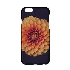 Art Beautiful Bloom Blossom Bright Apple Iphone 6/6s Hardshell Case by Nexatart
