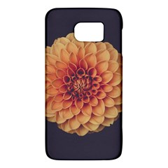 Art Beautiful Bloom Blossom Bright Galaxy S6 by Nexatart