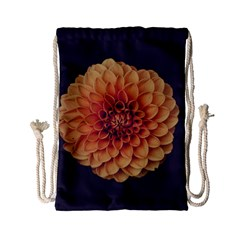 Art Beautiful Bloom Blossom Bright Drawstring Bag (small)