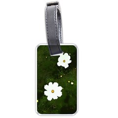 Daisies In Green Luggage Tags (one Side)  by DeneWestUK