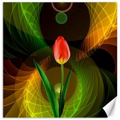 Tulip Flower Background Nebulous Canvas 16  X 16   by Nexatart