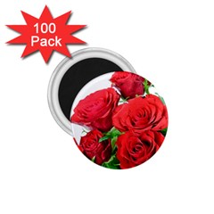 A Bouquet Of Roses On A White Background 1 75  Magnets (100 Pack)