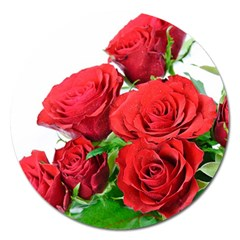 A Bouquet Of Roses On A White Background Magnet 5  (round)