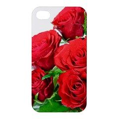 A Bouquet Of Roses On A White Background Apple Iphone 4/4s Hardshell Case by Nexatart