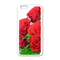A Bouquet Of Roses On A White Background Apple Iphone 6/6s White Enamel Case by Nexatart