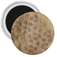 Parchment Paper Old Leaves Leaf 3  Magnets by Nexatart