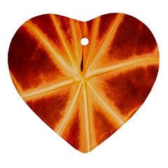 Red Leaf Macro Detail Ornament (heart) by Nexatart