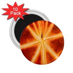 Red Leaf Macro Detail 2 25  Magnets (10 Pack)