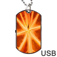 Red Leaf Macro Detail Dog Tag Usb Flash (two Sides) by Nexatart