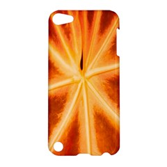Red Leaf Macro Detail Apple Ipod Touch 5 Hardshell Case by Nexatart