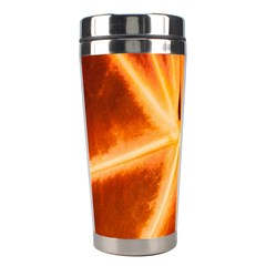 Red Leaf Macro Detail Stainless Steel Travel Tumblers by Nexatart