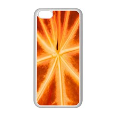 Red Leaf Macro Detail Apple Iphone 5c Seamless Case (white)