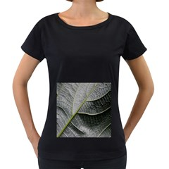 Leaf Detail Macro Of A Leaf Women s Loose Fit T Shirt (black) by Nexatart