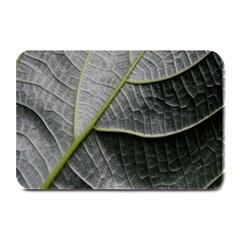 Leaf Detail Macro Of A Leaf Plate Mats