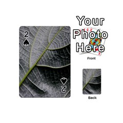 Leaf Detail Macro Of A Leaf Playing Cards 54 (mini)  by Nexatart