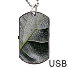 Leaf Detail Macro Of A Leaf Dog Tag Usb Flash (one Side) by Nexatart