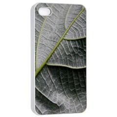 Leaf Detail Macro Of A Leaf Apple Iphone 4/4s Seamless Case (white) by Nexatart