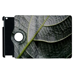 Leaf Detail Macro Of A Leaf Apple Ipad 2 Flip 360 Case by Nexatart