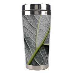 Leaf Detail Macro Of A Leaf Stainless Steel Travel Tumblers by Nexatart