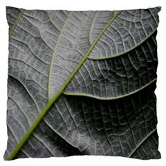Leaf Detail Macro Of A Leaf Large Flano Cushion Case (two Sides) by Nexatart