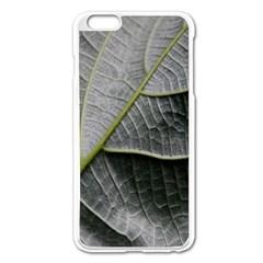 Leaf Detail Macro Of A Leaf Apple Iphone 6 Plus/6s Plus Enamel White Case by Nexatart