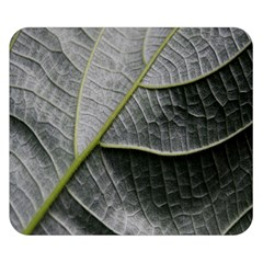 Leaf Detail Macro Of A Leaf Double Sided Flano Blanket (small)  by Nexatart