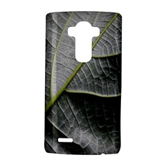 Leaf Detail Macro Of A Leaf Lg G4 Hardshell Case by Nexatart