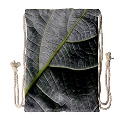 Leaf Detail Macro Of A Leaf Drawstring Bag (large) by Nexatart