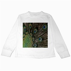 Close Up Of Peacock Feathers Kids Long Sleeve T Shirts